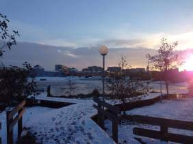 Snowy campus 2